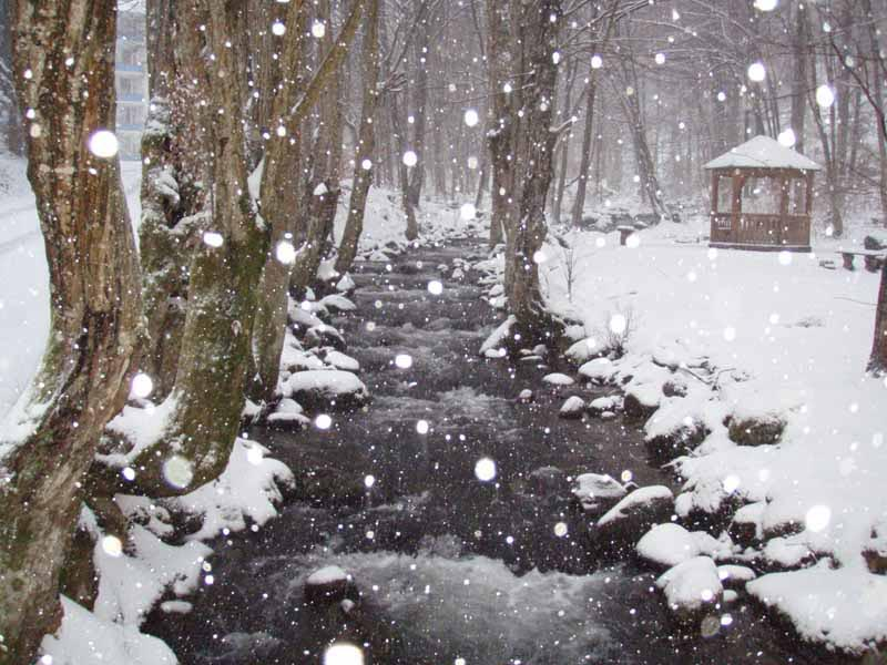 Санаторий Синяк. Река Синявка. Снегопад