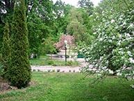 Санаторий Синяк. Парковая зона.